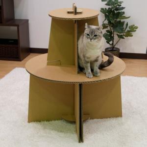ドギーマンキャティーマン (CattyManダンボールで作る猫ファニチャーにゃんテリア ミニツリー