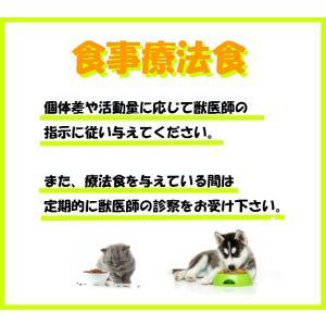 ロイヤルカナン 猫用 pHコントロール ライト 500g 療法食|momo-tail|06