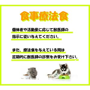 ロイヤルカナン 犬用 心臓サポート1+関節サポート 1kg 療法食 ドライ 送料無料|momo-tail|06