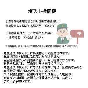 アライブ わんPAWプロテクト ベーシック 2号(青・緑・茶・オレンジ・黒・ネイビーブルー・紫) レターパック便可 momo-tail 04