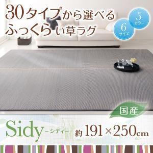 い草ラグ 国産 ふっくら Sidy シディ 191×250cm 熊本県産い草 代引き不可|momoda
