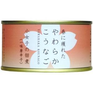 木の屋石巻水産 生炊小女子佃煮(一味唐辛子) 90g