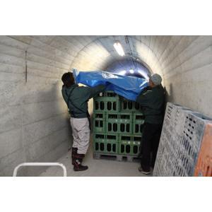 【クール発送】白馬錦 純米吟醸ひやおろし 1.8L アルプス湖洞貯蔵|monchan|04