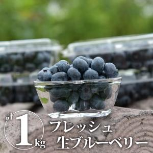 【送料無料】生ブルーベリー 計1kg フレッシュ生ブルーベリー 果物 くだもの 木の実 木ノ実 きのみ 新鮮 フレッシュ 生食用【WS】 monmiya