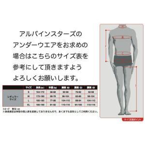 アルパインスターズ ZX SOCKS / ソックス アンダーウェア FIA8856-2000公認モデル|monocolle|02