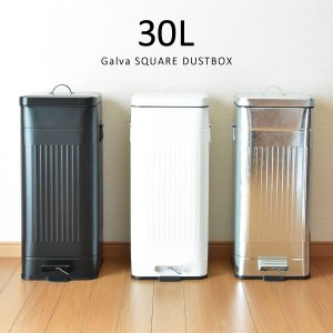 ゴミ箱 ごみ箱 ダストボックス ふた付き おしゃれ 分別 キッチン Galva 30L garbage can