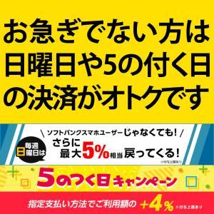 【DM便不可】モノリス虫草カプセル|monolith-net|02