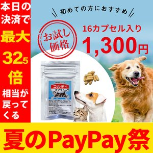 【DM便送料無料】犬・猫のサプリメント・免疫を維持し元気・食...