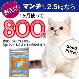 【医薬品グレード】犬猫の肝臓と皮膚を守るサプリ。ALP/ALT/AST肝機能が心配な子にプラセンタ12000(5gパック)|monolith-net|11