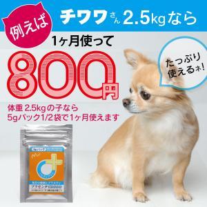 【医薬品グレード】犬猫の肝臓と皮膚を守るサプリ。ALP/ALT/AST肝機能が心配な子にプラセンタ12000(5gパック)|monolith-net|12