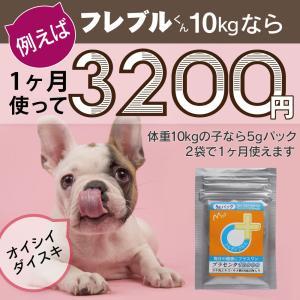 【医薬品グレード】犬猫の肝臓と皮膚を守るサプリ。ALP/ALT/AST肝機能が心配な子にプラセンタ12000(5gパック)|monolith-net|15