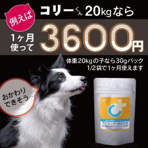 【医薬品グレード】犬猫の肝臓と皮膚を守るサプリ。ALP/ALT/AST肝機能が心配な子にプラセンタ12000(30gパック)|monolith-net|11
