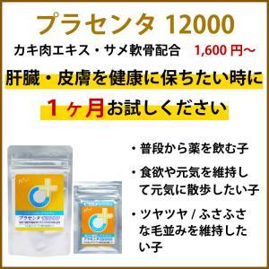【医薬品グレード】犬猫の肝臓と皮膚を守るサプリ。ALP/ALT/AST肝機能が心配な子にプラセンタ12000(30gパック)|monolith-net|04