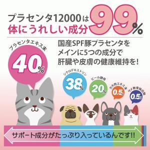 【医薬品グレード】犬猫の肝臓と皮膚を守るサプリ。ALP/ALT/AST肝機能が心配な子にプラセンタ12000(30gパック)|monolith-net|09