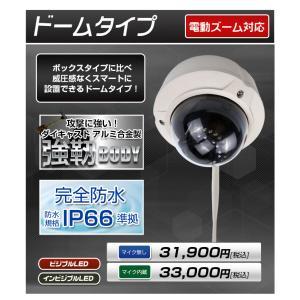 防犯カメラ 監視カメラ SONY製CMOS 243万画素 電動「4倍ズーム」対応 定時メール AP機能で簡単設定 屋内・屋外用 IPカメラ ワイヤレス WiFi monosupply 03