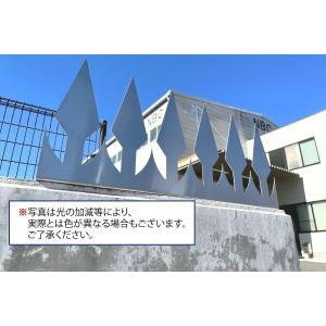 ツインピー デザイン 忍び返し 剣先 大型タイプ|monpi-hikido-2016