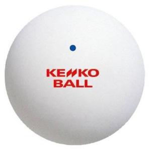 ナガセケンコー(KENKO) ソフトテニスボール 1ダース(12個) TSOW-V(1DOZ) montaukonline