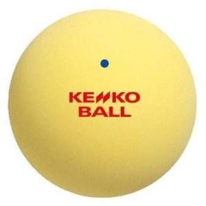 ナガセケンコー(KENKO) ソフトテニスボール 1ダース(12個) TSOY-V(1DOZ) montaukonline