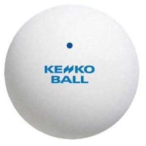 ナガセケンコー(KENKO) ソフトテニスボール スタンダード ホワイト 1ダース(12個) TSSW-V montaukonline