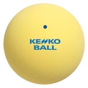 ナガセケンコー(KENKO) ソフトテニスボール スタンダード イエロー 1ダース(12個) TSSY-V montaukonline