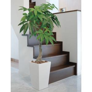 光触媒観葉植物(人工観葉植物)光の楽園 ロイヤルパキラ 1.35m