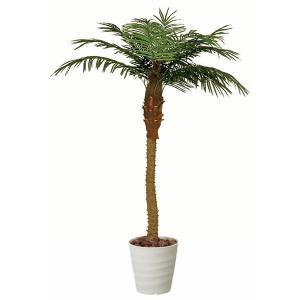 光触媒観葉植物(人工観葉植物) 光の楽園 フェニックス 2.1m|montbrette