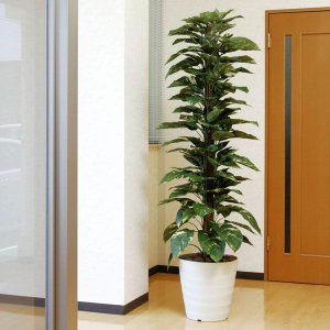 インテリアグリーン(光触媒人工観葉植物) ジャイアントポトス 1.8m