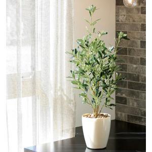 人工観葉植物(光触媒加工)光の楽園 オリーブ73cm|montbrette