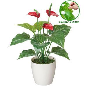 光触媒観葉植物テーブルタイプ(人工植物) フレッシュアンスリューム|montbrette