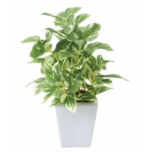 光触媒人工観葉植物テーブルタイプ ポトスポット|montbrette