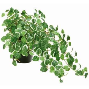 光触媒人工観葉植物テーブルタイプ 光の楽園 プミラ|montbrette