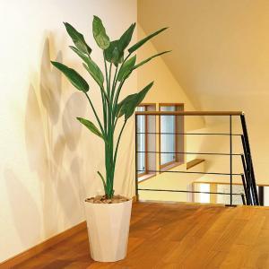 光触媒人工観葉植物 光の楽園 ストレチア1.6m|montbrette