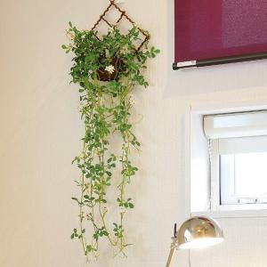 光触媒人工観葉植物(壁掛けタイプ) 光の楽園 壁掛けジャスミン花付
