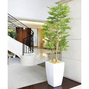 光触媒人工観葉植物 光の楽園 アーバンゴールデンリーフ1.8m