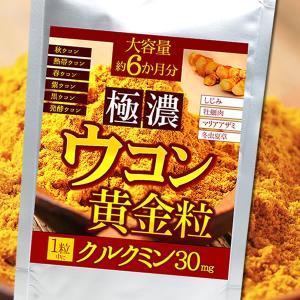 ウコン / 極濃ウコン 黄金粒 約6か月分 送料無料...