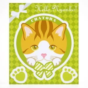 猫 ステッカー Hello,Nyanko! 茶トラ|mony
