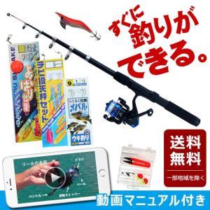 釣り竿セット 送料無料 小物釣りBセット 200A-27 TOISTAX 釣具 よくばり セット 2...