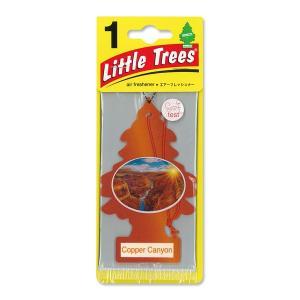 Little Tree(リトルツリー)エアーフレッシュナー Copper Canyon mooneyes