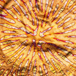 バリエゲーテッド ゴールド リーフ(赤色系)|mooneyes