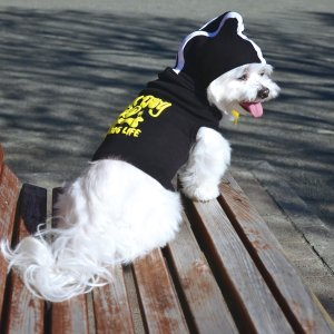 ムーンアイズ (MOONEYES) ドッグ フーディー 小型犬、中型犬用 mooneyes