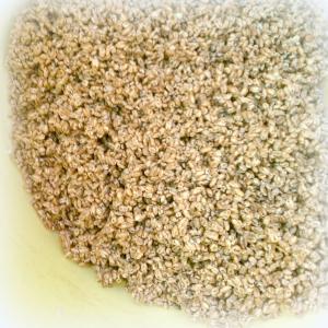 無糖のダイシモチのポン加工品:完全な無添加もち麦100% (原料段階で1kg)|morie