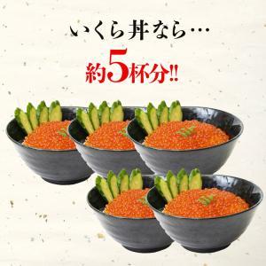( いくら イクラ )  いくら醤油漬け サーモントラウト 250g イクラ 丼 冷凍便 ギフト 送料無料|morigen|05