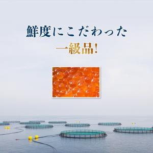 ( いくら イクラ )  いくら醤油漬け サーモントラウト 250g イクラ 丼 冷凍便 ギフト 送料無料|morigen|09