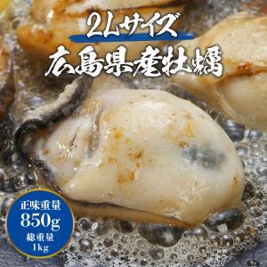 カキ 牡蠣 かき 広島県産 大粒2Lの牡蠣 約1kg 冷凍便 業務用 カキフライやお鍋に|morigen|02