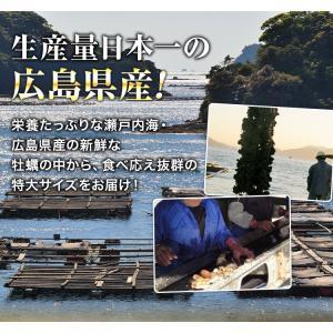 カキ 牡蠣 かき 広島県産 大粒2Lの牡蠣 約1kg 冷凍便 業務用 カキフライやお鍋に|morigen|03