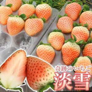 新品種 白イチゴ  淡雪 あわゆき  甘く酸味が少ない白いちご 200gUP×2パック 同梱不可 指定日不可 冷蔵配送 stp