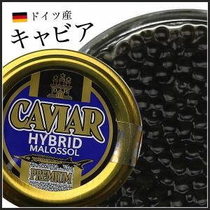 キャビア/ ドイツ産  20g  お手軽価格 ハイブリットキャビア 冷凍便