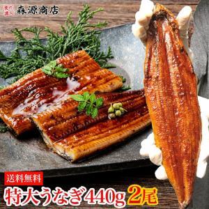 鰻 ウナギ うなぎ 蒲焼き / 2尾セット タレ付  冷凍便...