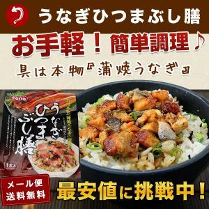 24日10時よりSALE / 鰻ひつまぶし膳 1食分 メール...