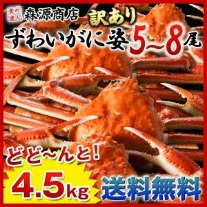 蟹 カニ かに ズワイガニ 姿ずわい蟹 4.5kg 5〜8尾 冷凍便|morigen